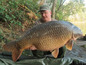 Perfect common 33kg 1